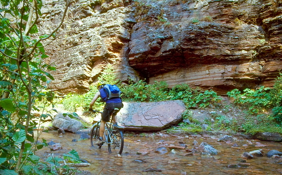 mountain biking on the monture trail, montana