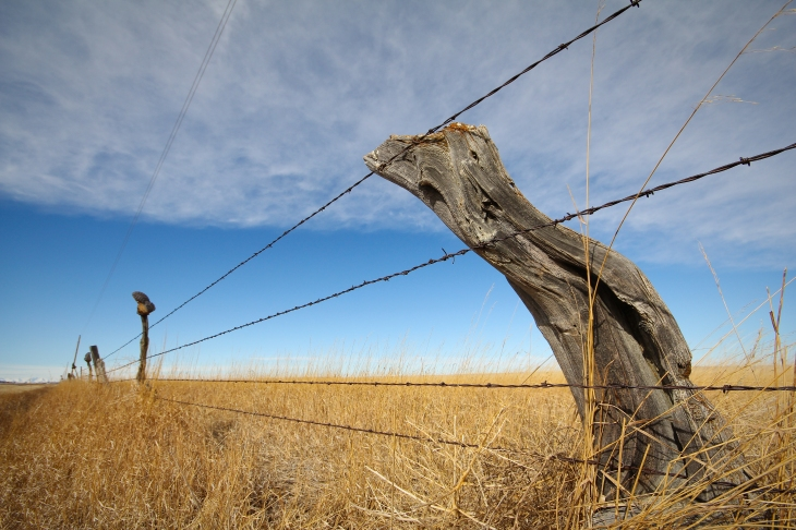 montana fence, ranch,